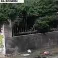 L'Associazione ideaLi Persone Progetti Territori profondamente colpita dalla notizia del vile attentato all'Istituto professionale Falcone Morvillo si unisce al dolore dei familiari delle vittime e di tutta la comunità della città di Brindisi, esprimendo la […]